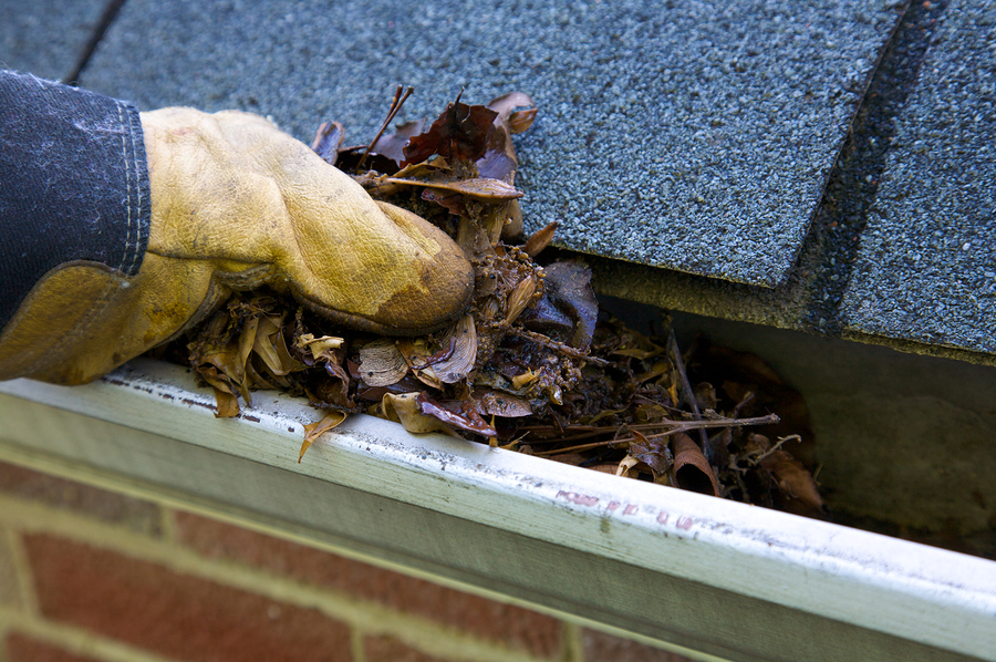 best gutter cleaning & repairs