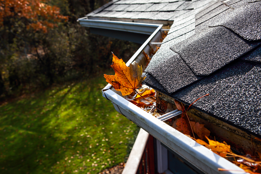 professional gutter guards cleaning service